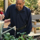 Garfield Gibson Jr at Quentin Mease Horticultural Therapy Garden